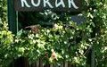 Korak Winery and Vineyards